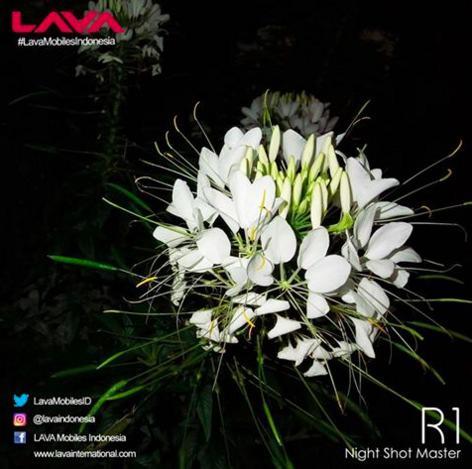 hasil-kamera-lava-r1